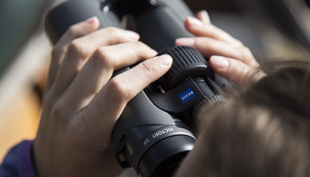 Person using the Zeiss Sport Optics Victory binoculars